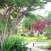 garden-a-r