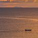 IMG_2068-sito-900x400