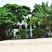 mbweni_rooms_from_beach-r